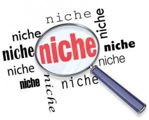 niche site update